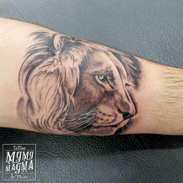 Tatouage d un portrait de lion